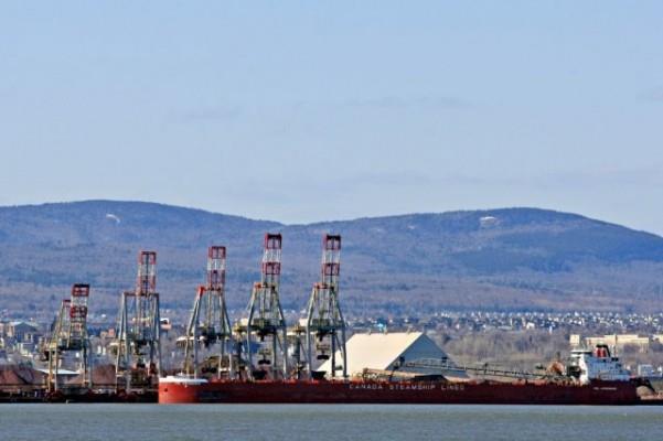 «Il y a une différence entre le Port de Québec et Arrimage Québec. Le Port de Québec fait tout son possible, mais il ne peut pas ordonner aux compagnies de faire ce qu'il veut», nuance Régis Labeaume. Photothèque Le Soleil, Pascal Ratthé