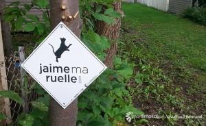 ruelle2