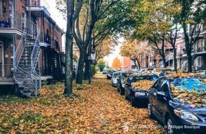 automne-2e-avenue