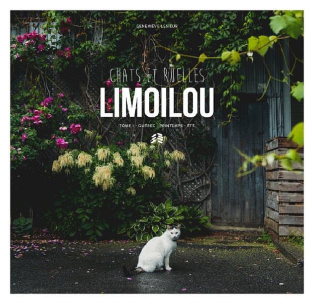 couverture-livre-chats-ruelles-limoilou-genevieve-lesieur