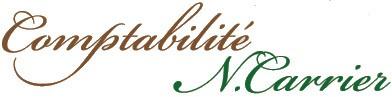Impôts des particuliers | Comptabilité N.Carrier