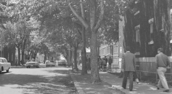Limoilou, 1963 - André Lévesque