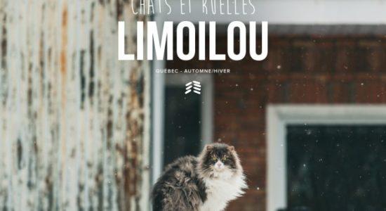 <em>Chats et ruelles Limoilou</em>, prise deux - Viviane Asselin