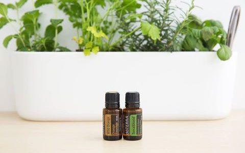 Atelier huiles essentielles : Gestion du stress
