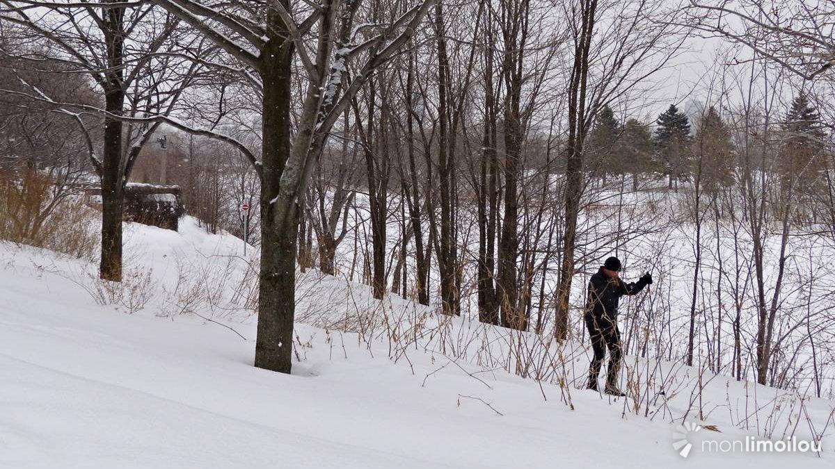 Parc linéaire de la rivière Saint-Charles, février 2018