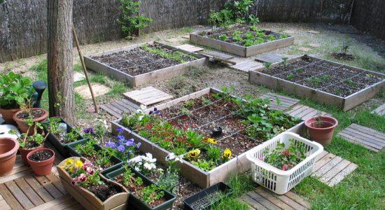 Jardinage écologique (formation de 25h)