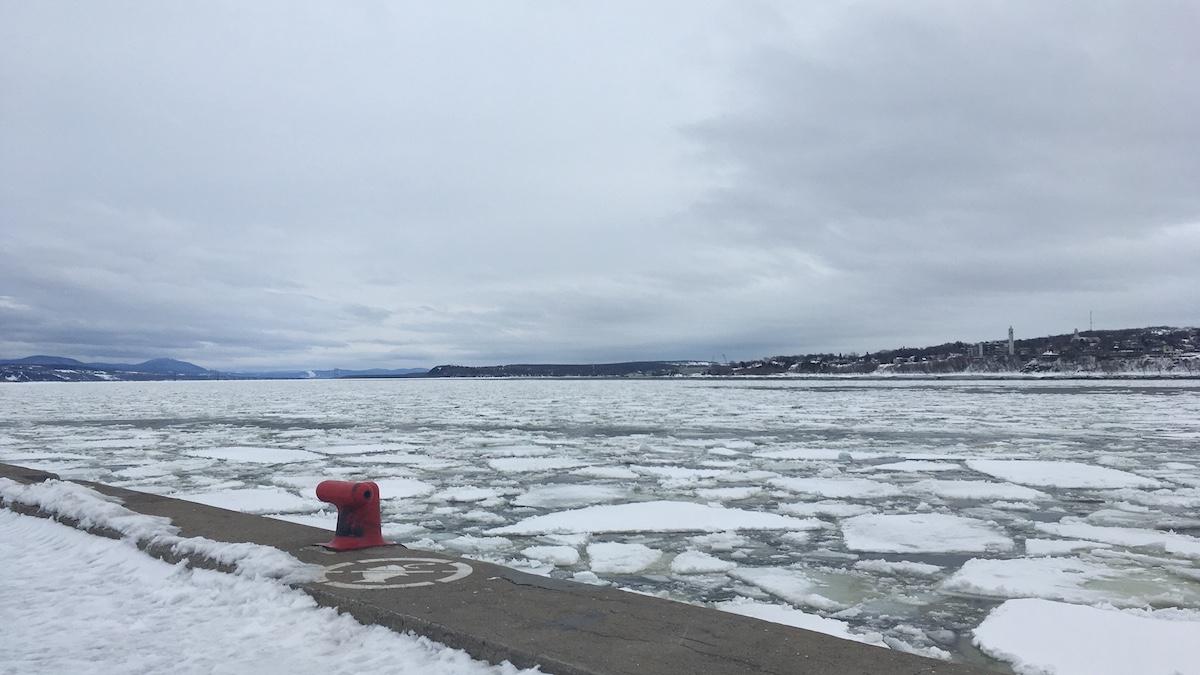 Selon SOS Port de Québec, le projet Beauport 2020 menace de détruire des milieux naturels et d'augmenter le trafic naval sur le fleuve Saint-Laurent.