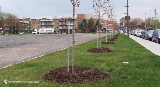 La requalification du boulevard des Capucins aura été la première d'une longue liste d'améliorations pour le quartier, estime Suzanne Verreault.