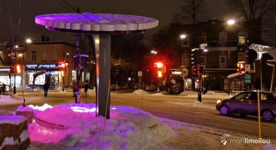 La place Limouloise embrase l'hiver… et embrasse le Nouvel An - Suzie Genest