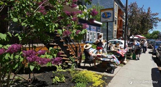 La Ville de Québec dit non aux Petits Bazars - Suzie Genest