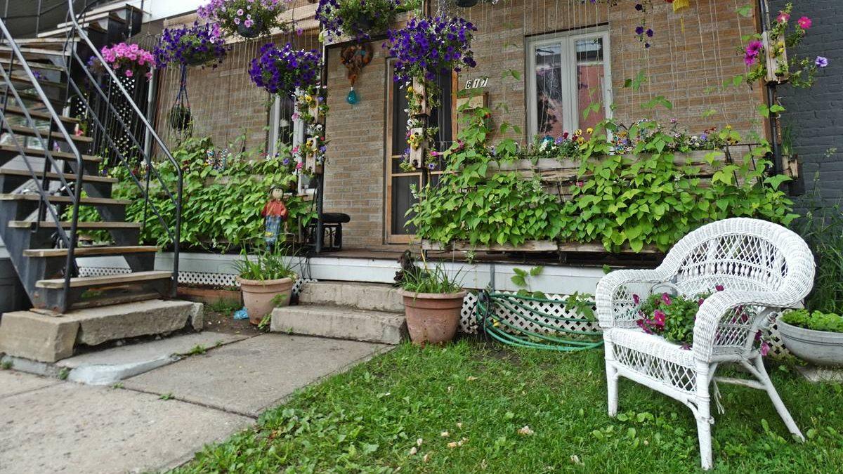 Parterres et balcons verdoyants et fleuris du Vieux-Limoilou (1) | 2 juillet 2020 | Article par Jean Cazes