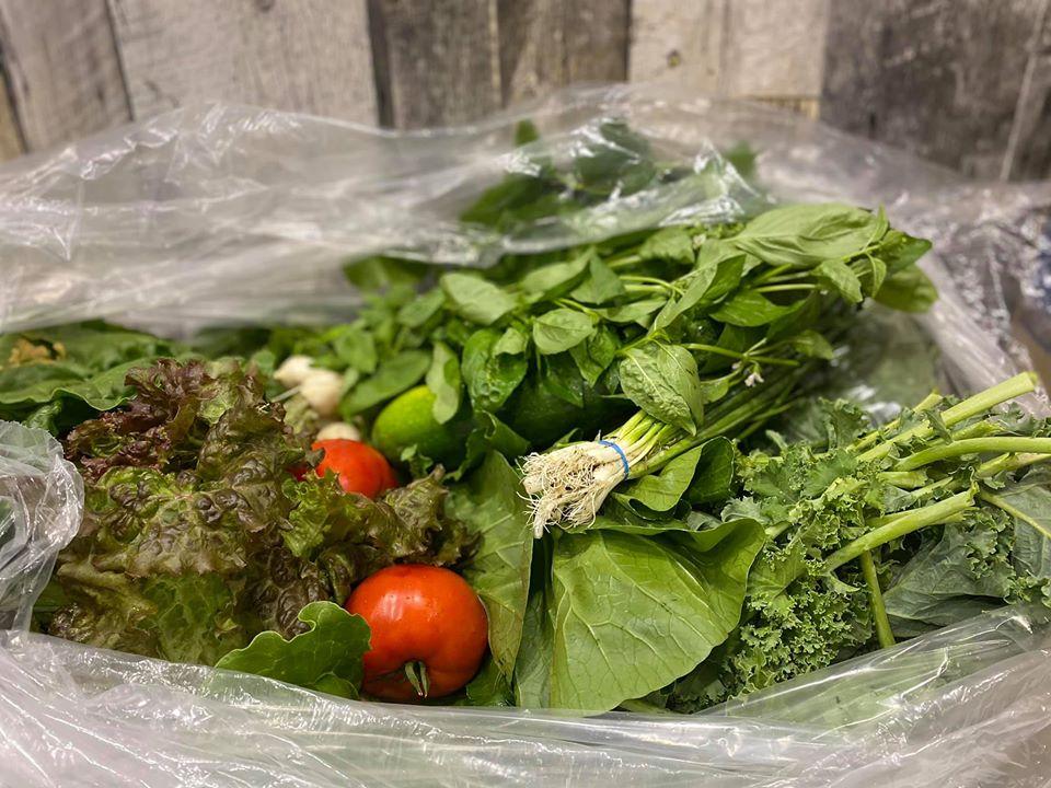 Légumes bio de la Ferme de la Coulée douce | Au Fruit des Moines