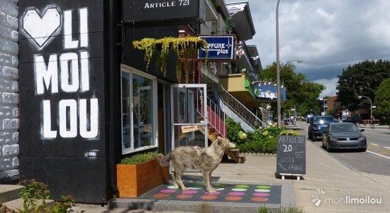 Limoiloup à la boutique Article 721. 18 août 2016.