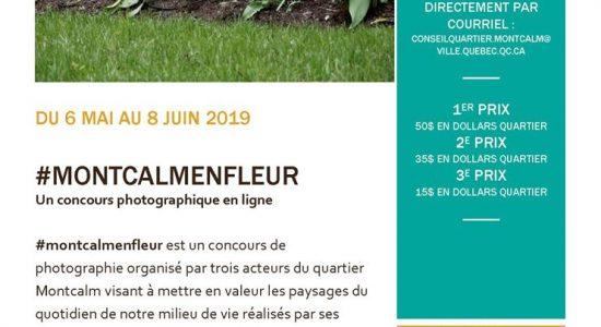 Concours #montcalmenfleur
