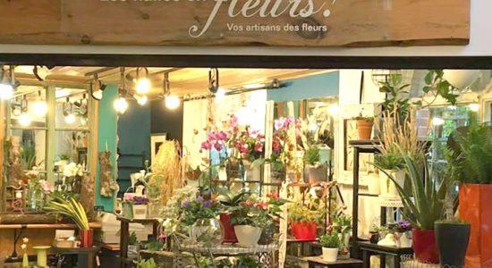 Les Clématites »Pirouettes' | Halles en fleurs (Les)