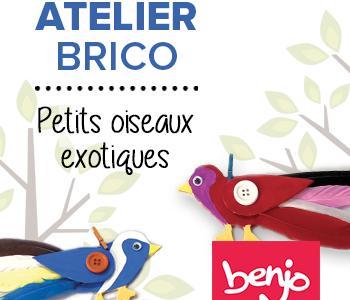 Atelier brico – Petits oiseaux exotiques