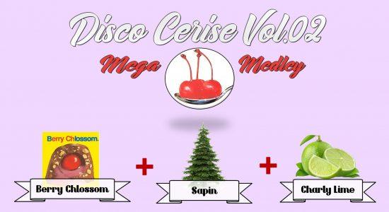 Disco Cerise Vol.2 – Mega Medley