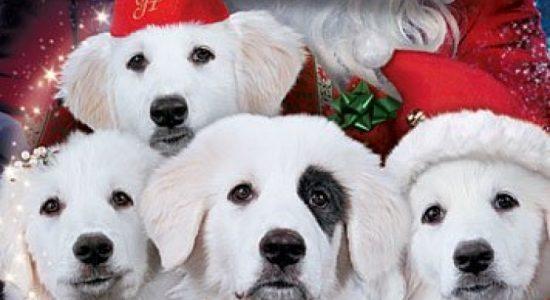 Ciné-famille: Le chien de Noël 2, les toutous de Noël