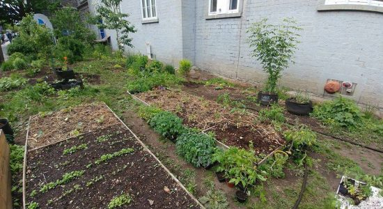 Les 5 à 7 Jardineries