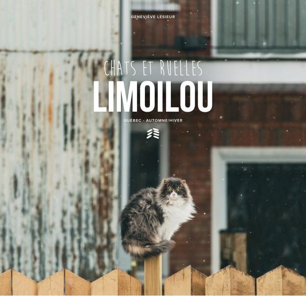 Chats et ruelles Limoilou, édition automne/hiver (Photo : courtoisie)