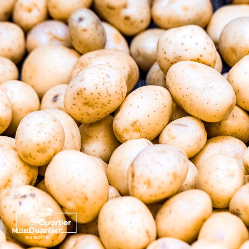 Pommes de terre Gabrielle jaunes