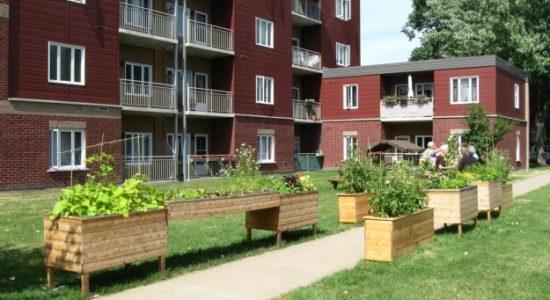 Démarrez un jardin communautaire grâce à Craque-Bitume - Laura Rancourt