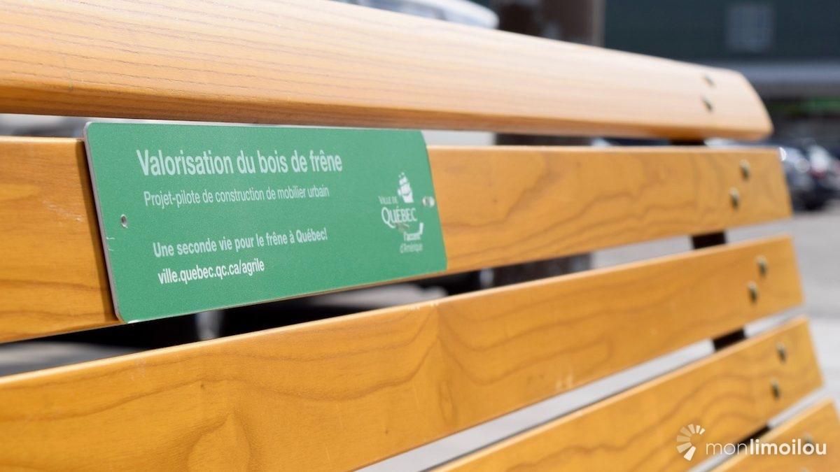 Le mobilier est fabriqué à partir du bois des frênes non affectés par l'agrile du frêne, mais abattus en mesure préventive.