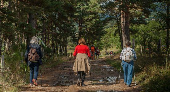 Marches dans la nature