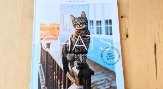Un voyage de 3398 km pour photographier les chats du Québec - Jessica Lebbe