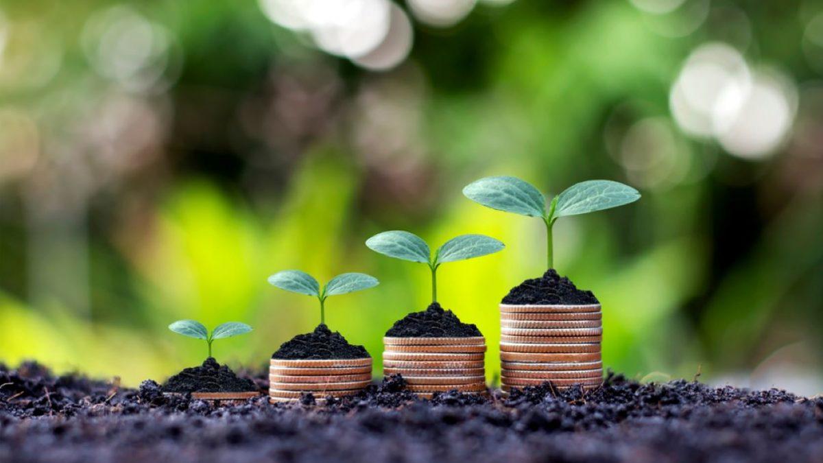 Un fonds écoresponsable pour la Caisse Desjardins de Limoilou | 21 avril 2021 | Article par Julie Rheaume