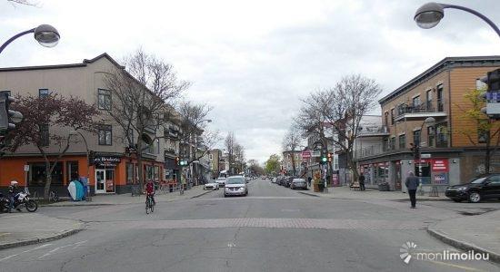 Vieux-Limoilou : le conseil de quartier veut une nouvelle consultation pour le tramway et un accès sécurisé au parc d'Iberville - Gabriel Côté