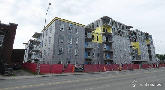Les Habitations Marie-Clarisse. État des travaux au 21 juin 2021.