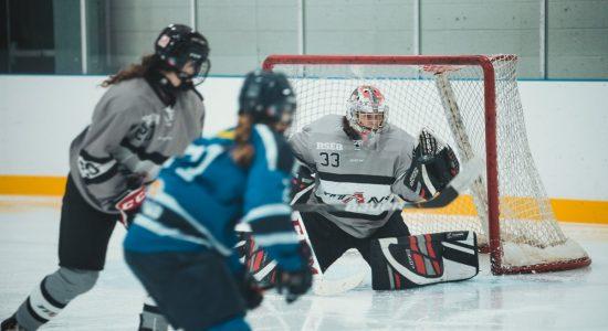 Hockey collégial féminin D1 : les Titans de retour dans l'antre des Islanders - Christian Lemelin