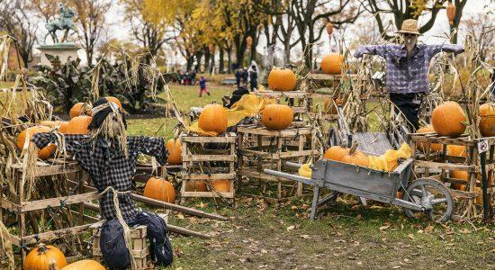 Halloween et le mois des morts