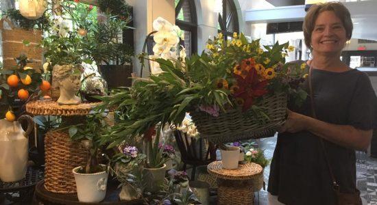 Nouveaux arrivages de l'Île d'Orléans tous les jours | Halles en fleurs (Les)