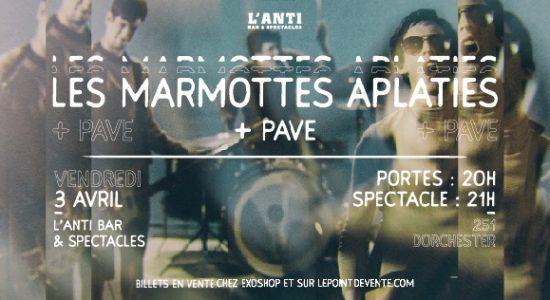 Les Marmottes Aplaties avec Pave